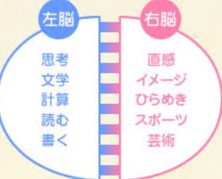76) リスニングにに有利なのは右脳派?左脳派?